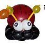 Die Käferfamilie vom Ballonkünstler