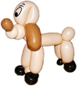 Ballonkünstler Pforzheim Hund modellieren - Ballonkünstler aus Pforzheim modelliert Hund