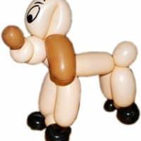 Ballonkünstler Pforzheim Hund modellieren