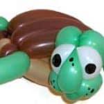 Ballons Schildkröte